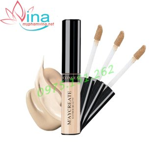 Kem che khuyết điểm The Saem Cover Perfection Tip Concealer (6.5g) #01